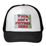 Customized Your Dog's Photo Trucker Hats