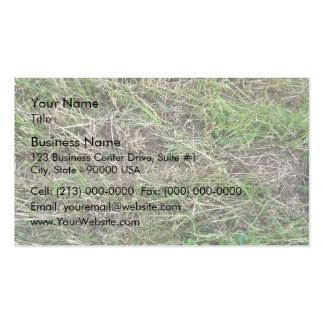 Cut Grass Field With Irregular Patterns Business Card