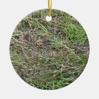 Cut Grass Field With Irregular Patterns Christmas Tree Ornaments