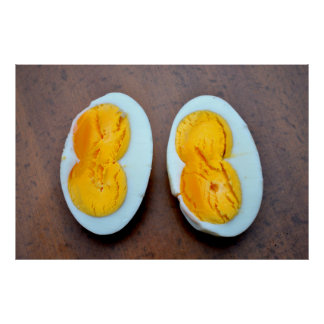 cut open chicken egg with two yolk, poster