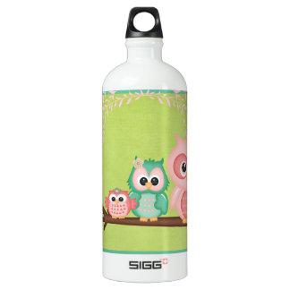 Cut Owls Branch Pink Mint Green Birds Aluminum Water Bottle