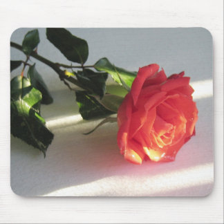 Cut Rose on Table Lit by Sunlight Mouse Pad