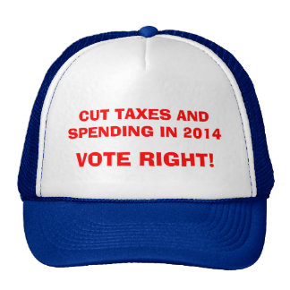 CUT TAXES AND SPENDING IN 2014 - VOTE RIGHT TRUCKER HAT
