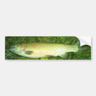 """cut throat trout"" trout, fly, fishing bumper sticker"