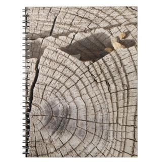 Cut wood cross-section texture Notebook