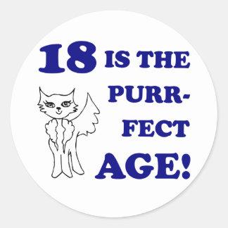 Cute 18th Birthday Present Round Stickers