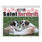 Cute 2019 Dog Breed Saint Bernard Puppy Calendar