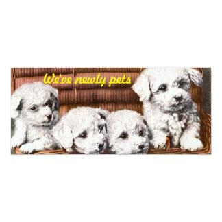 cute 4 fluffy puppies invitation