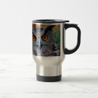 cute ,a wise owl 15 oz stainless steel travel mug