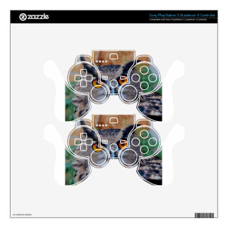 cute ,a wise owl PS3 controller decals