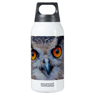cute ,a wise owl thermos bottle