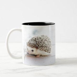 Cute adorable baby hedgehog Two-Tone coffee mug