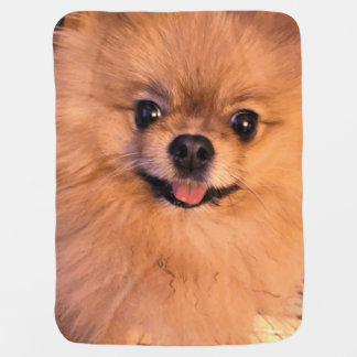 Cute Adorable Cuddly Pomeranian Pet Dog Animal Baby Blanket