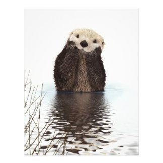 Cute adorable fluffy otter animal flyer
