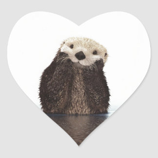 Cute adorable fluffy otter animal heart sticker