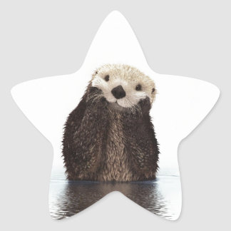 Cute adorable fluffy otter animal star sticker