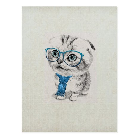 Cute adorable funny trendy blue eyes kitten postcard