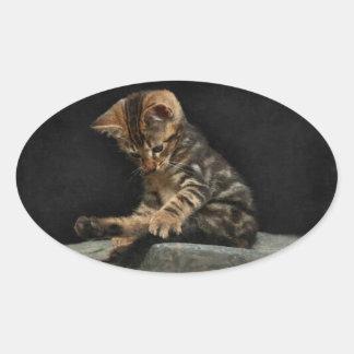 Cute adorable kitten Sticker