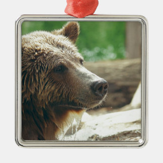 Cute Adorable Nature Bear Animal Face Eyes Square Metal Christmas Ornament