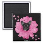 Cute Adorable Sly Heaven Chihuahua Fridge Magnet