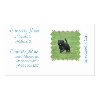 Cute Affenpinscher Dog Business Card Template