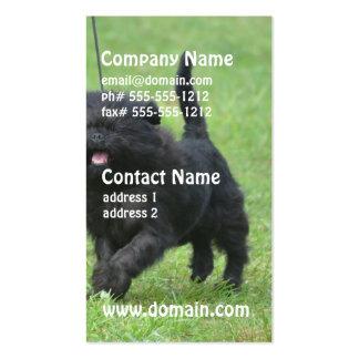 Cute Affenpinscher Dog Business Card