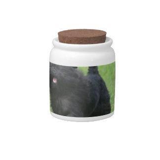 Cute Affenpinscher Dog Candy Jar