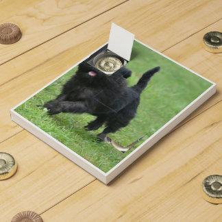 Cute Affenpinscher Dog Chocolate Countdown Calendar