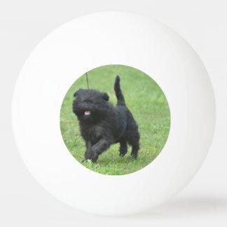 Cute Affenpinscher Dog Ping-Pong Ball