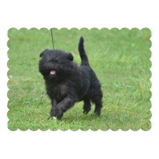 Cute Affenpinscher Dog Custom Invitations