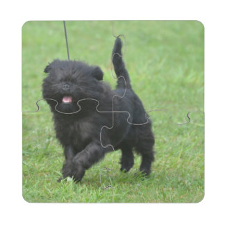 Cute Affenpinscher Dog Puzzle Coaster