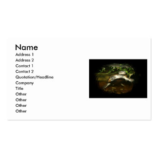 Cute African Side Necked brown turtle black frame Business Card
