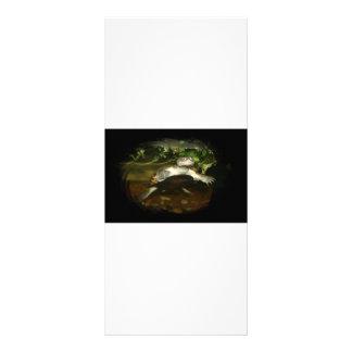 Cute African Side Necked brown turtle black frame Full Color Rack Card
