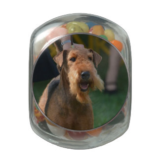 Cute Airedale Terrier Glass Candy Jars