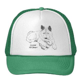 Cute akita and teddy bear dog art green trucker hat