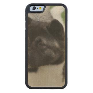 Cute Akita Carved® Maple iPhone 6 Bumper