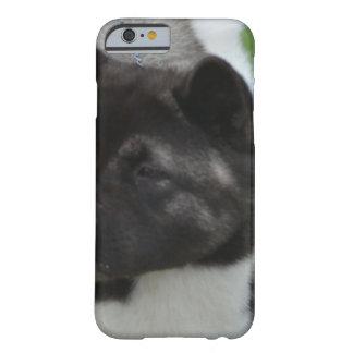 Cute Akita iPhone 6 Case