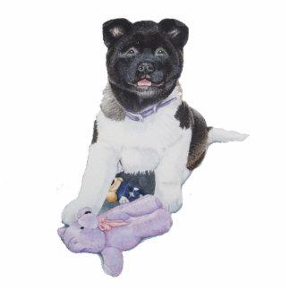 Cute akita puppy dog with blue teddy bear portrait cutout
