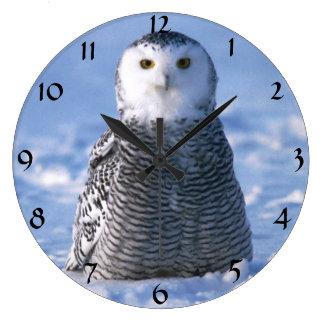 Cute Alaska Arctic Snowy Owl Winter Photo Designed Large Clock