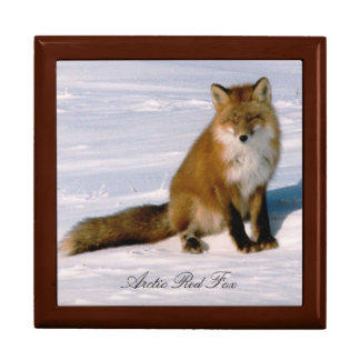 Cute Alaska Red Fox 7x6 Decorative Oak Box