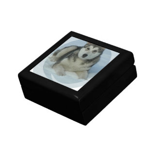 Cute Alaskan Malamute Jewelry Box