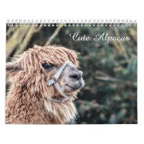 Cute Alpaca Calendar Fully Customizable