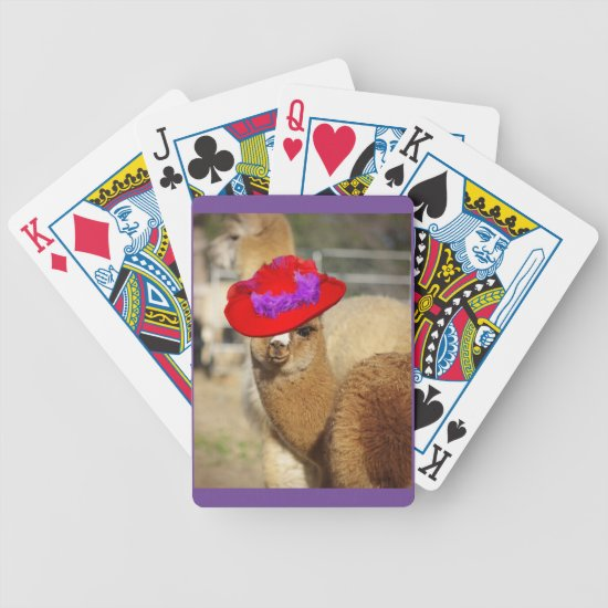 Cute Alpaca Cards