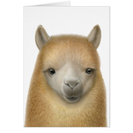 Cute Alpaca Greeting Card