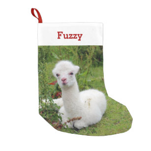 cute alpaca lover pet photo and name personalized small christmas stocking