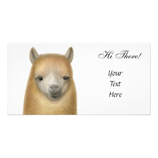 Cute Alpaca Photo Card