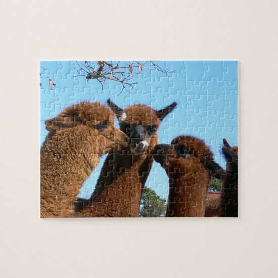 Cute Alpaca Puzzles with Gift Box