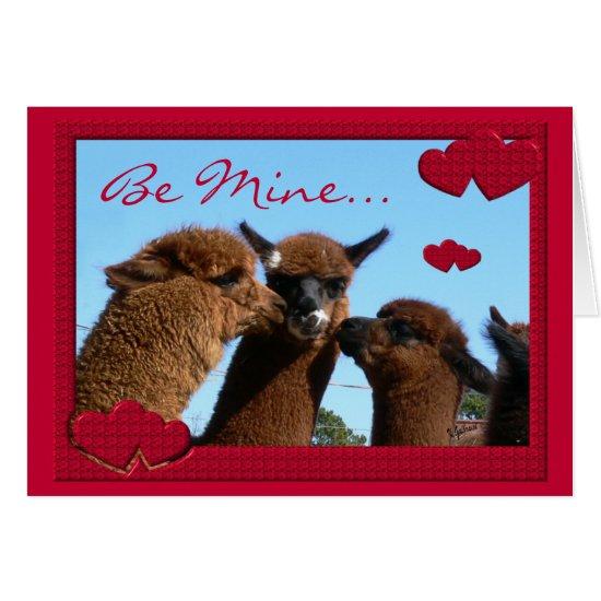 Cute Alpaca Valentines Day Greeting Card