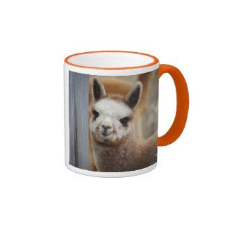Cute Coffee Mug Designs