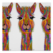 "Cute and Colorful Llama Poster - 12"" x 12"""